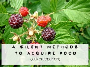 4 Silent Methods to Acquire Food