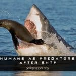 Humans as Predators after SHTF