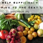 Self Sufficiency – Prepping to the Next Level