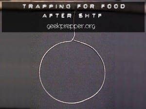 Trapping for Food After SHTF