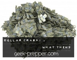 dollar crash what then geek-prepper