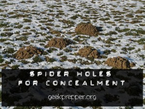 spider holes for concealment