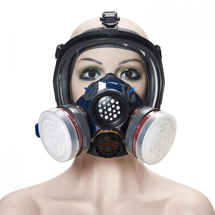 Holulo Organic Vapor Full Face Mask