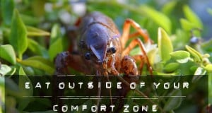 eat outside of your comfort zone