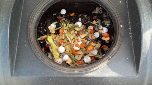 Benfits of composting your organic waste. Organic Waste in the compost tumbler.