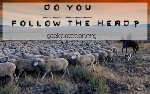 do you follow the herd
