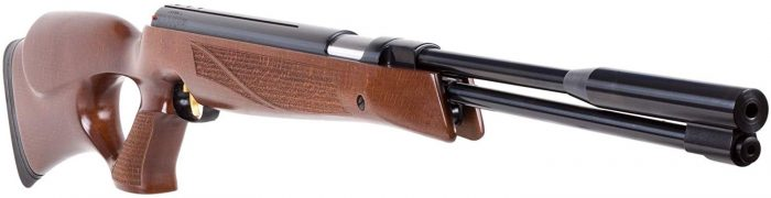 .20 cal air rifle