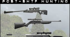 air rifles for post shtf hunting