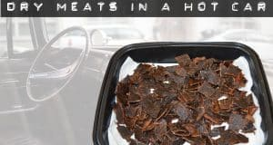 dry meats in a hot car