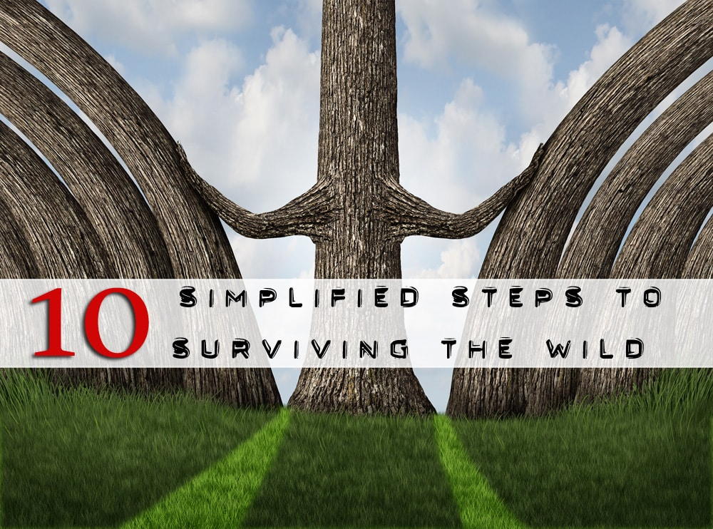 10 wilderness survival steps