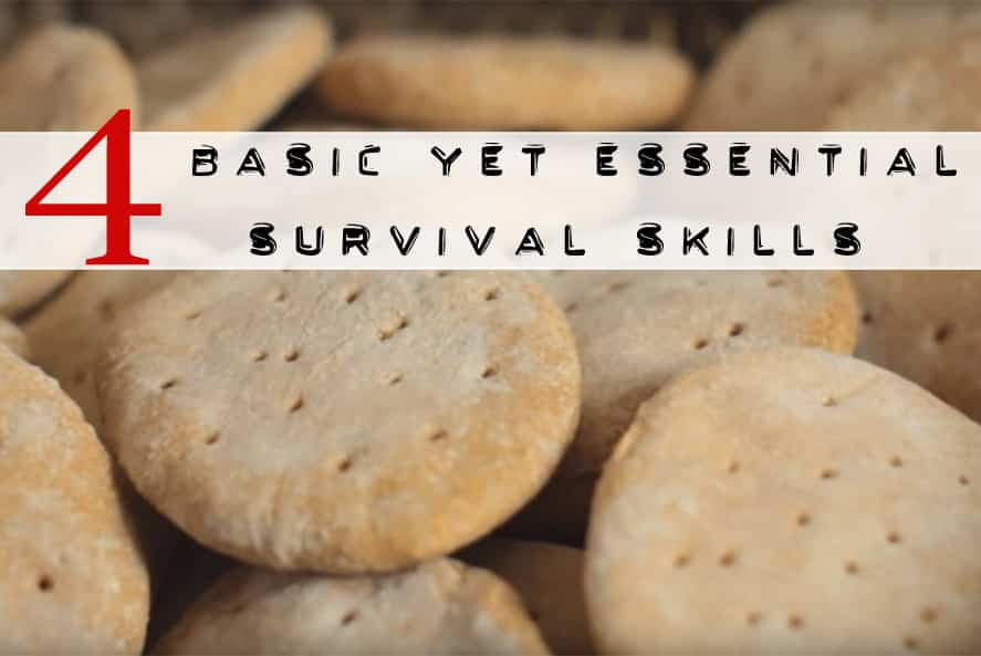 basic essential survival skills