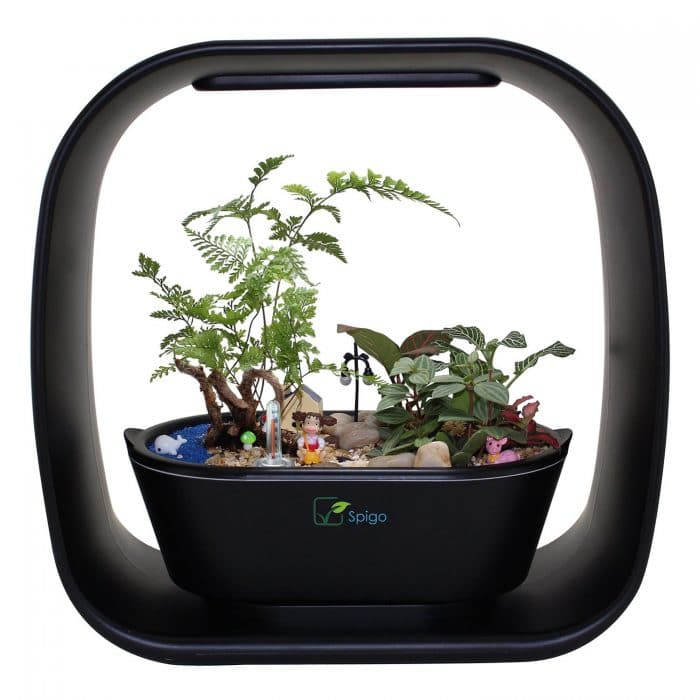 Indoor LED Light Garden Set