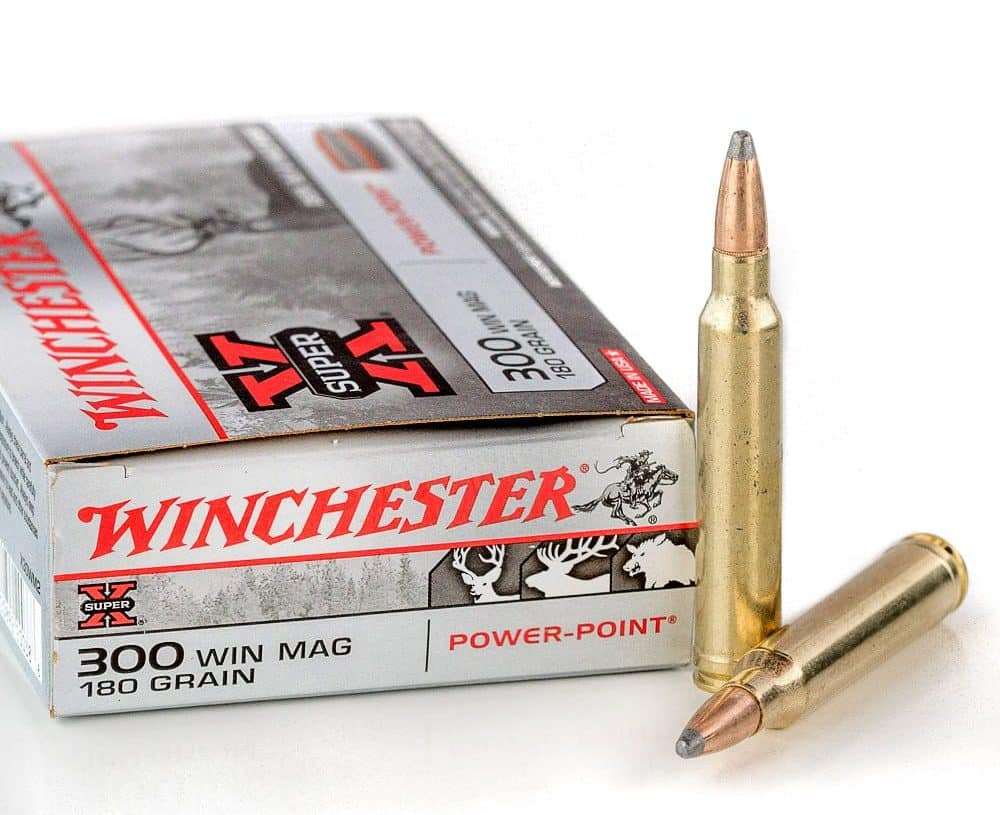 5 Best 300 Win Mag Rifles for [2019] Sharp Shooting