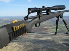 best-300-win-mag-rifle